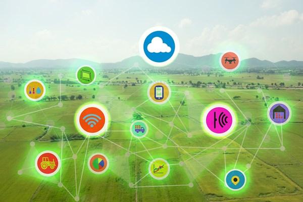 IBM與雀巢、聯合利華等食品龍頭合作利用區塊鏈追蹤食物汙染源