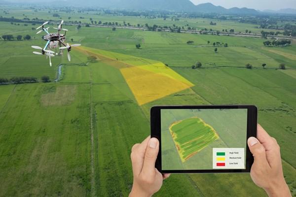 歐盟未來的網絡農場將利用蜂群演算法的無人機、機器人和感測器來幫助農事測量