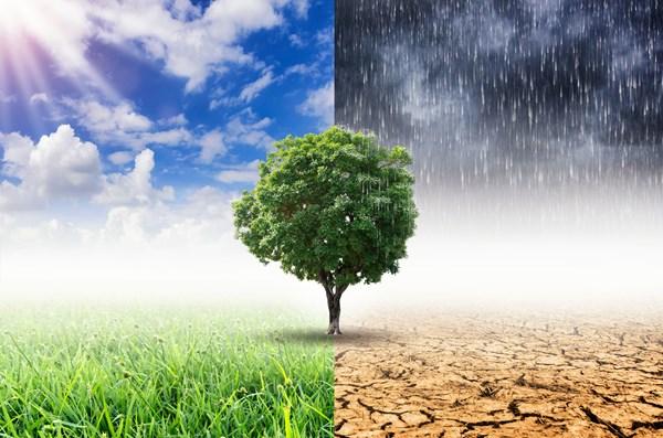 COP21聯合國巴黎氣候協定大會後續追蹤(2/4) — 2020年氣候行動方案後之農業因應聚焦規畫與改善行動