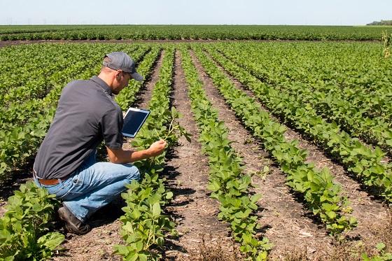 小農民也能為氣候調適研究盡一份心力