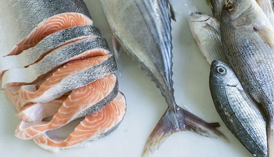 正確食品標示的基改鮭魚產品可望正式在美國販售
