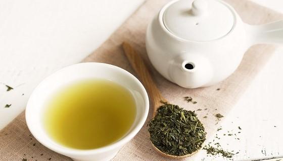 動物實驗中證實綠茶能阻斷肥胖、降低健康風險