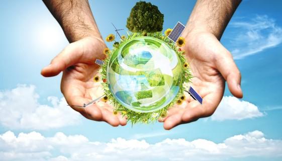 研究指出農電共生的經營模式可最大化太陽能光電轉換效率