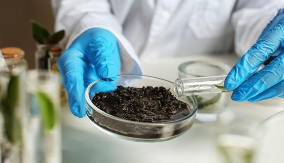 利用土壤與植物的簡化分析技術促進農業發展
