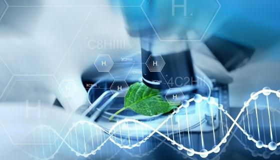 在機器學習的輔助下記錄植物立體表徵