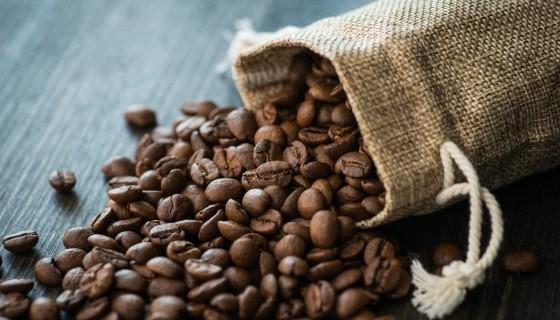 研究證實咖啡加工的副產物萃取物富含許多機能性成分