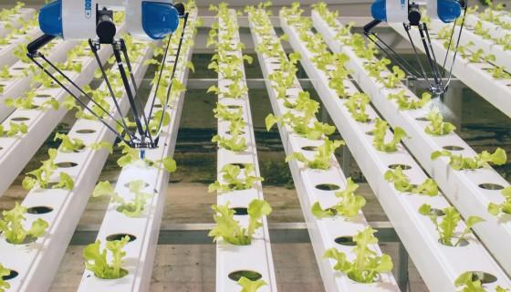 類似樂高積木般可組裝的垂直耕作系統