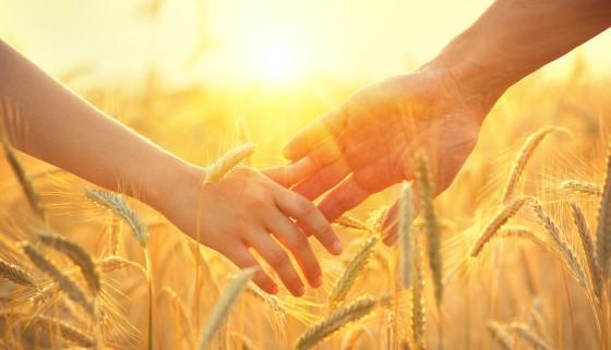 100年後農業與因應氣候變遷作物