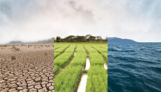 因應全球極端氣候 驅動創新農業技術到來