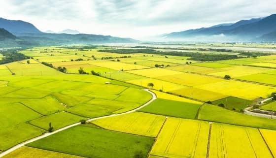 日本有機農業耕作面積2050年欲達100公頃