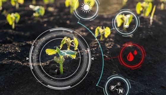 運用數位相機和AI監控土壤濕度並進行智能灌溉