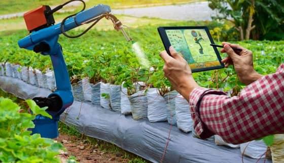 運用機器人收集作物資訊來優化作物育種
