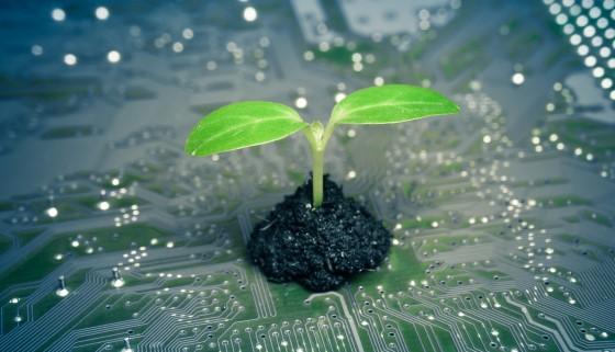 新加坡南洋理工大學利用電子訊號與植物溝通