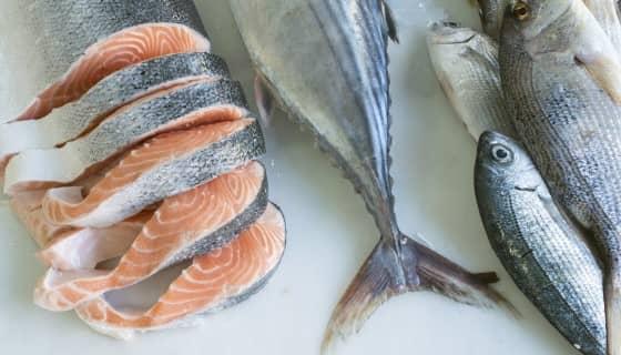 應用新穎技術來保護鮭魚免受浮游生物威脅