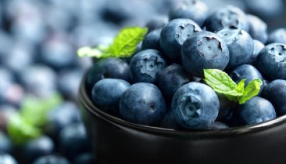 茶及漿果的攝取可能會減緩阿茲海默症的發生機率
